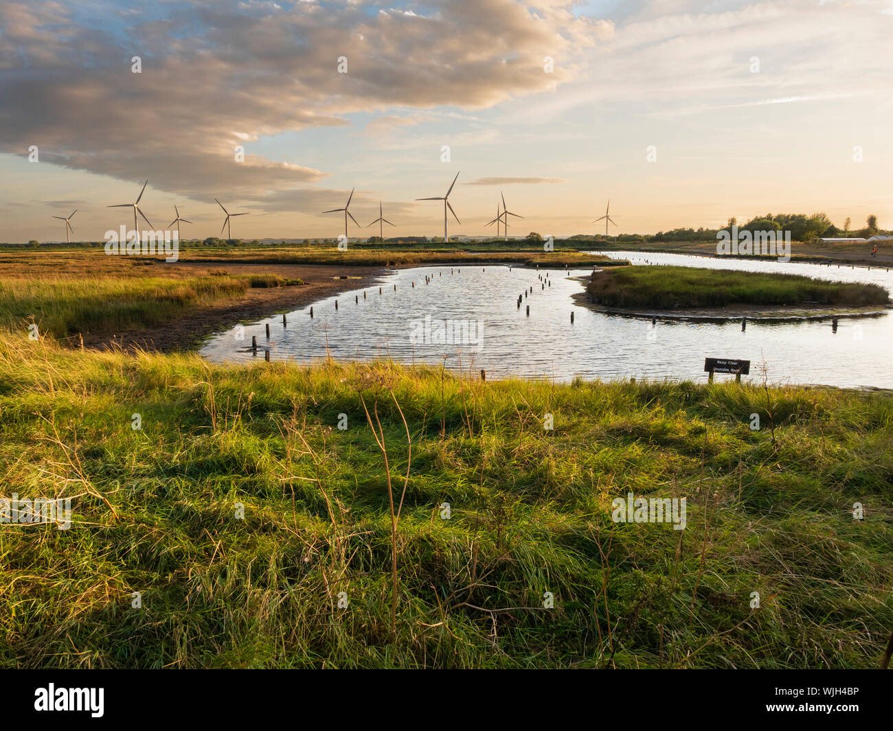 saline-pool-and-background-windfarm-at-the-rspb-reserve-on-tetney-marshes-north-east-lincolnshire-WJH4BP.jpg