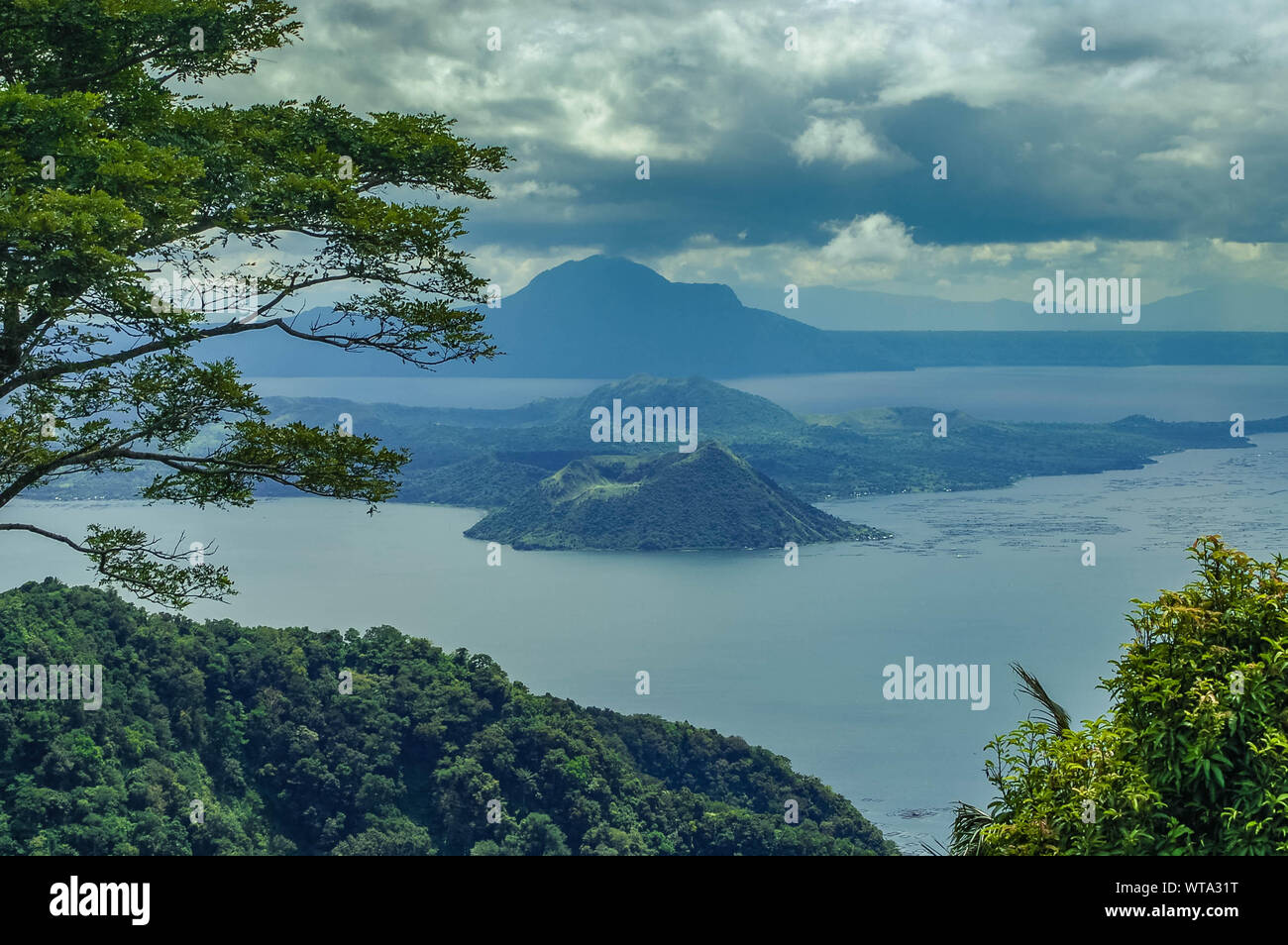 View Of Trees With Mountain Range In Background Stock Photo
