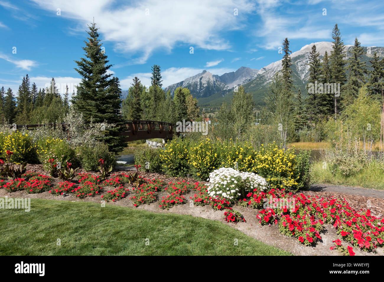 garden-flower-bed-in-green-urban-park-an