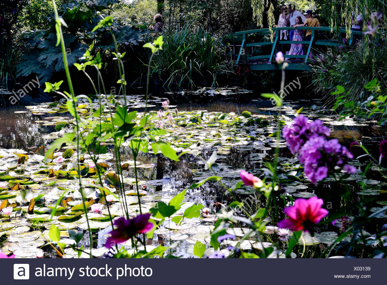 France, Normandy, Eure, Giverny, House And Garden Of The Painter Claude  Monet, Water Lily Pond