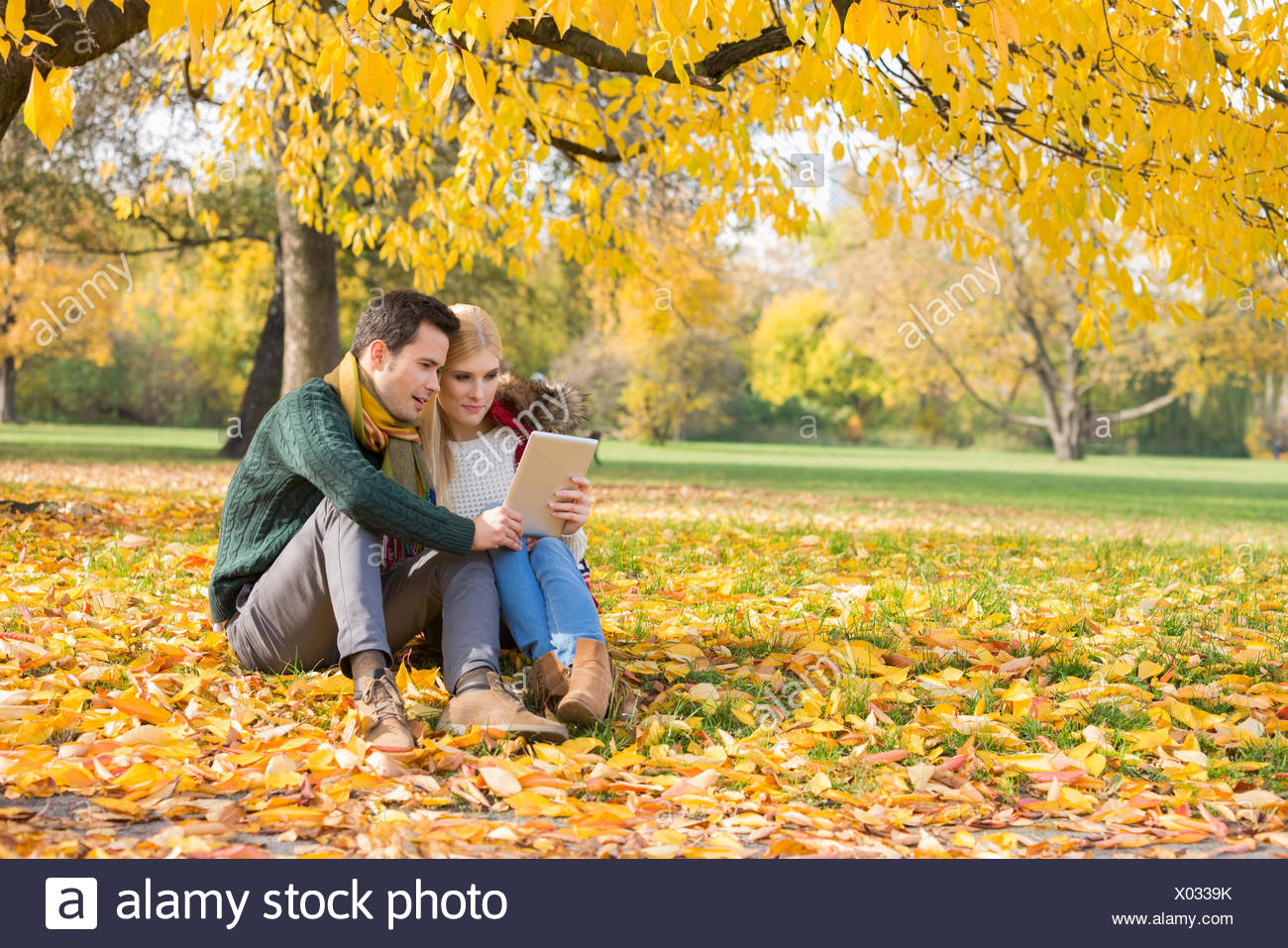 Full length of couple using tablet PC in park during autumn - Stock Image