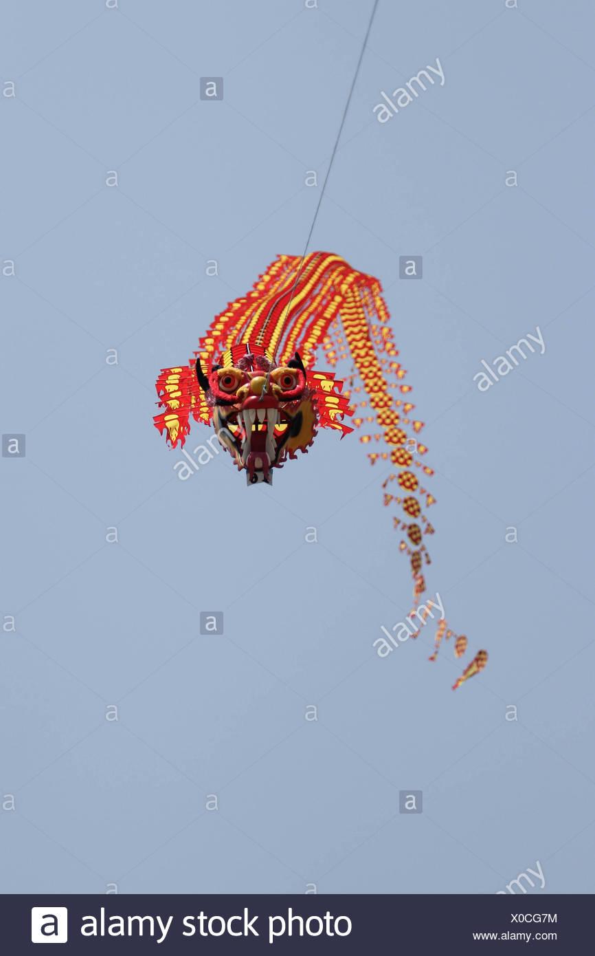Dragon Like Kite - Stock Image