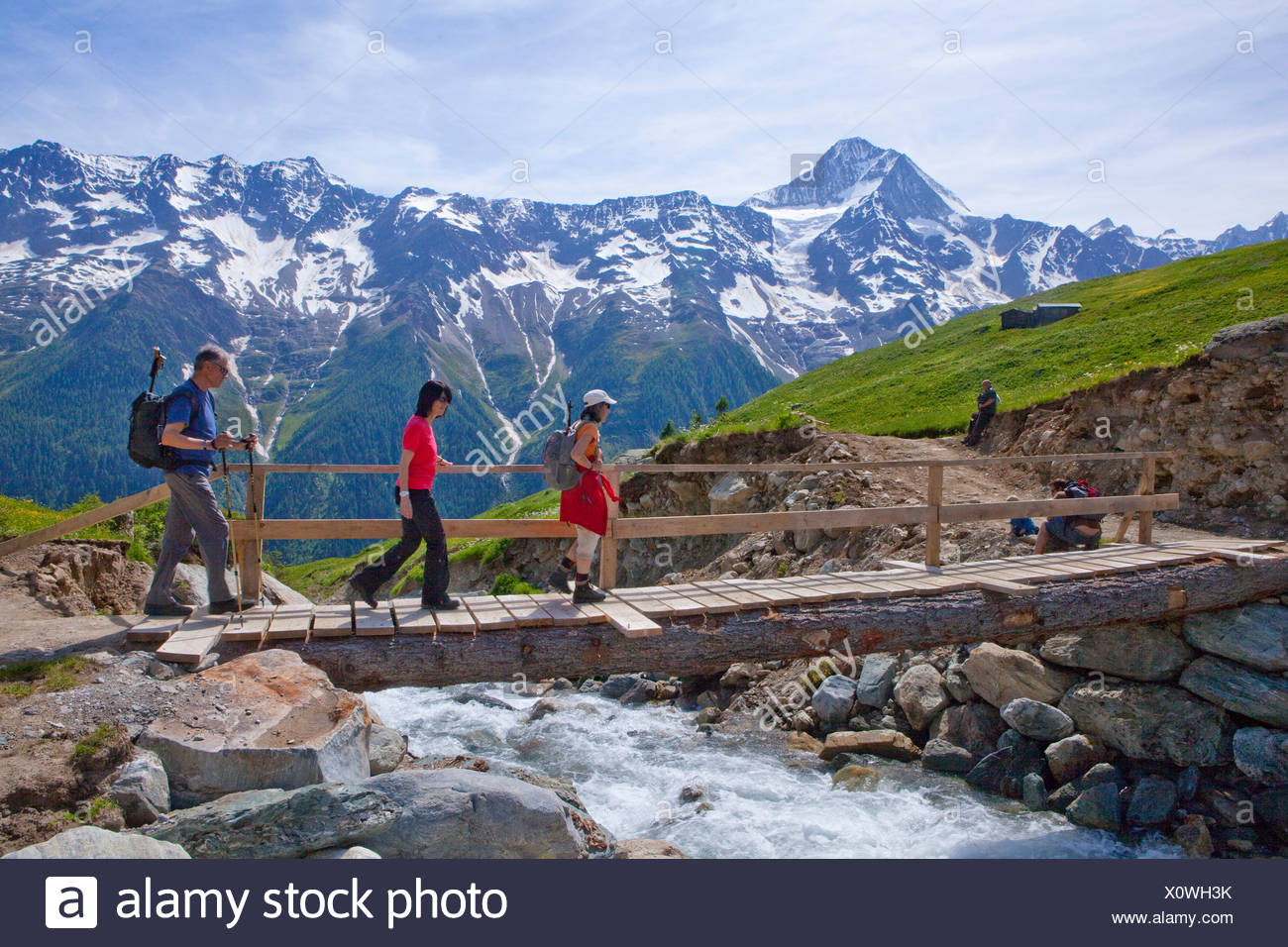 Walking, Hiking, Lötschentaler height way, height way, view, Bietschhorn, canton, Valais, mountain, mountains, group, footpath, - Stock Image