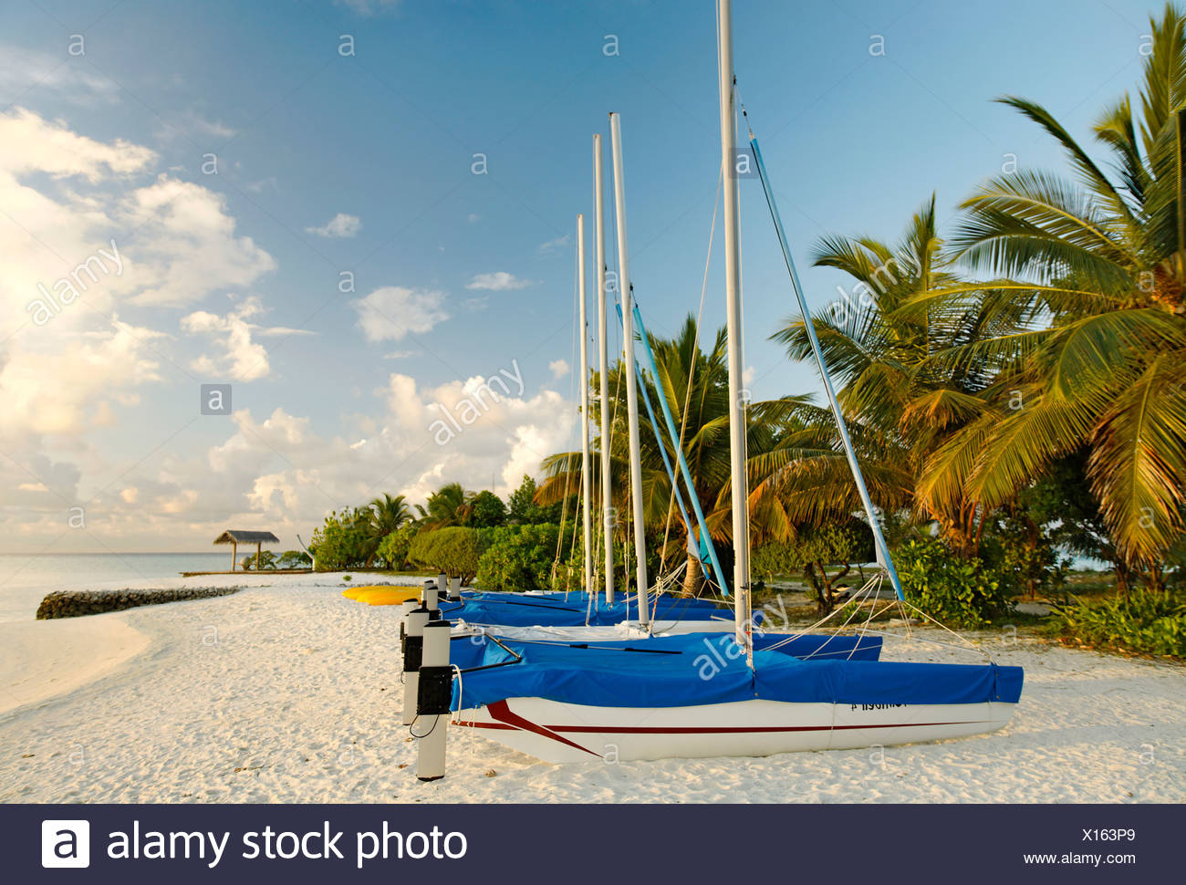 Hobby Car, catamarans, sail boats, side by side, on the beach, palm trees, Maldive island, South Male Atoll, Maldives, Achipela - Stock Image