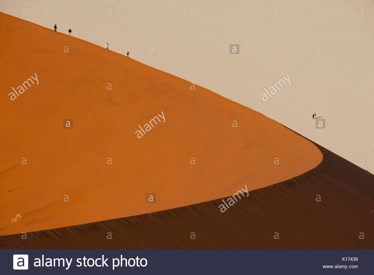 Hikers climbing up a sand dune ridge at Sossusvlei Namib-Naukluft National Park Namibia landscape wilderness - Stock Image