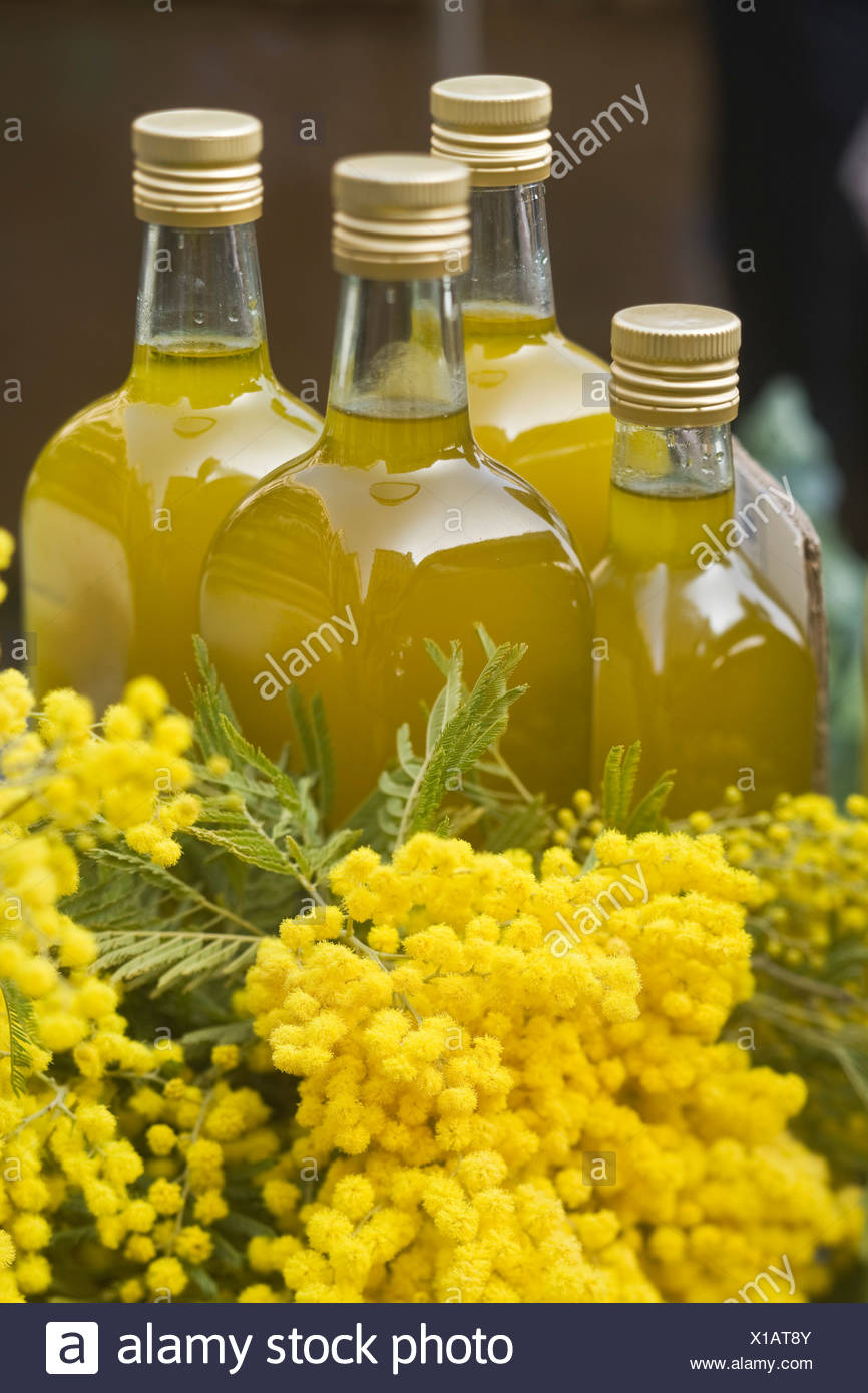 Mimosa and bottles of olive oil on the 'Marché du Cours Saleya', Nice - Stock Image