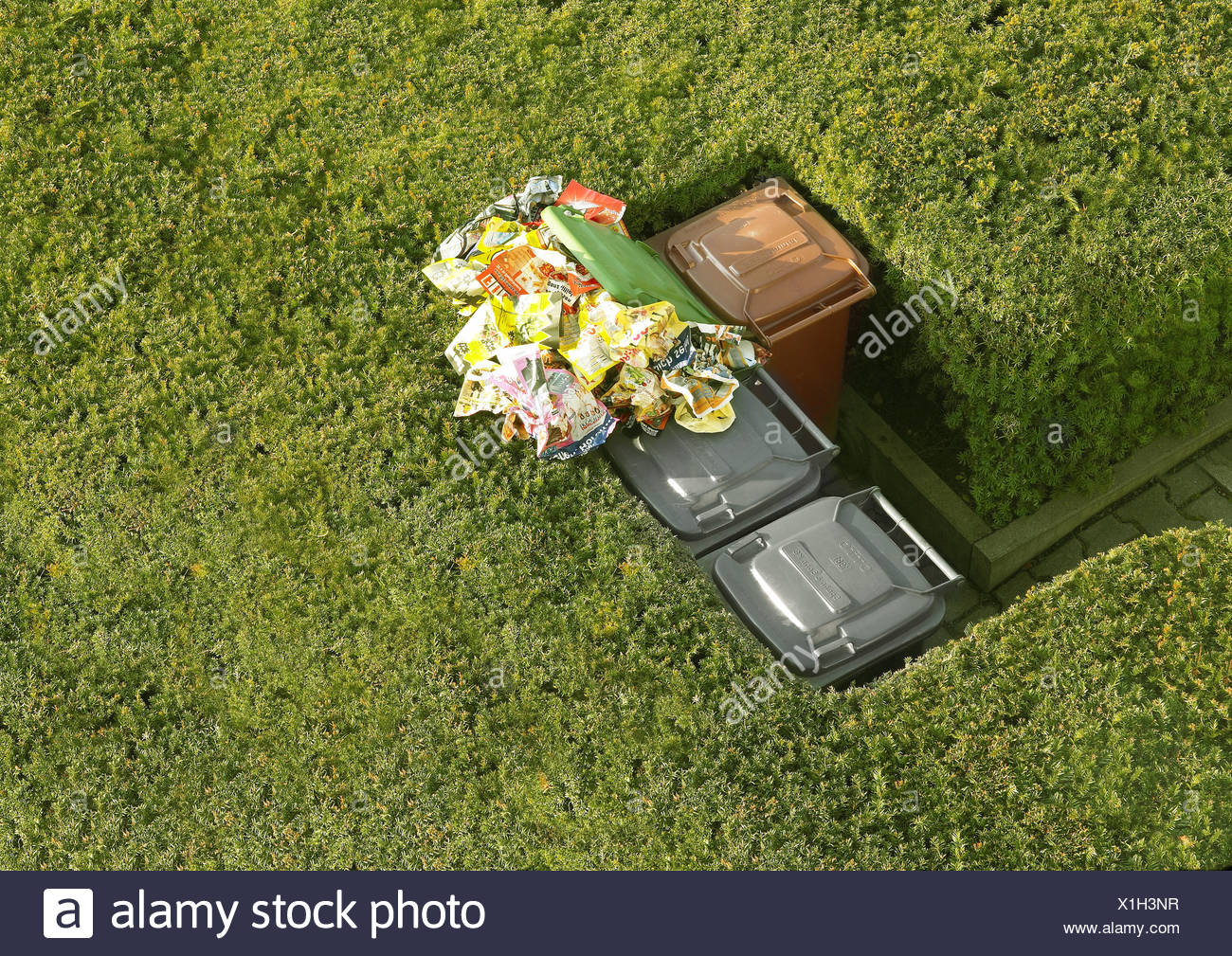 Hedges trashcans differently garbage-separation paper-ton fully overflows from above summers ornament-hedges way trashcans - Stock Image