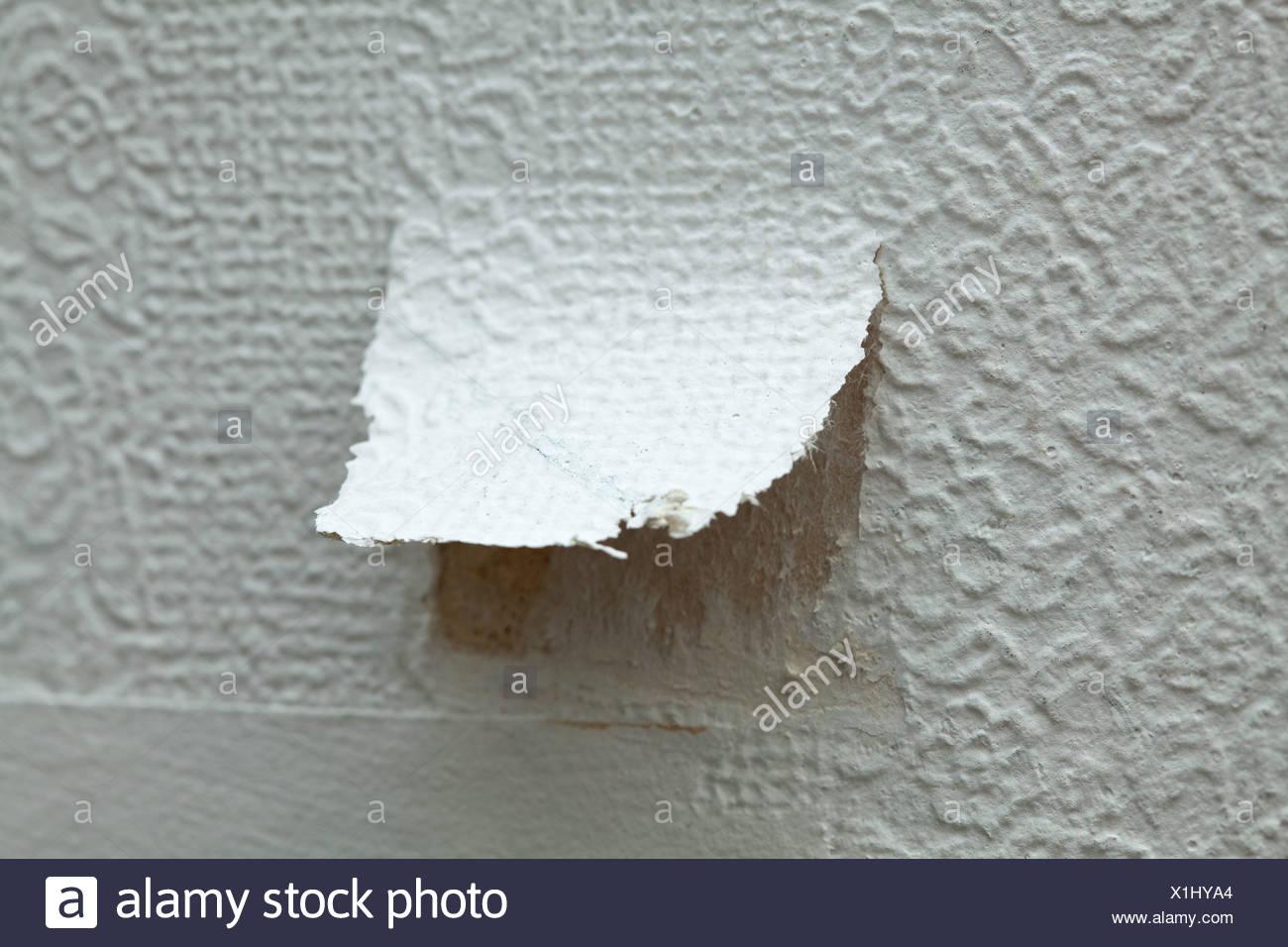 Torn wallpaper - Stock Image