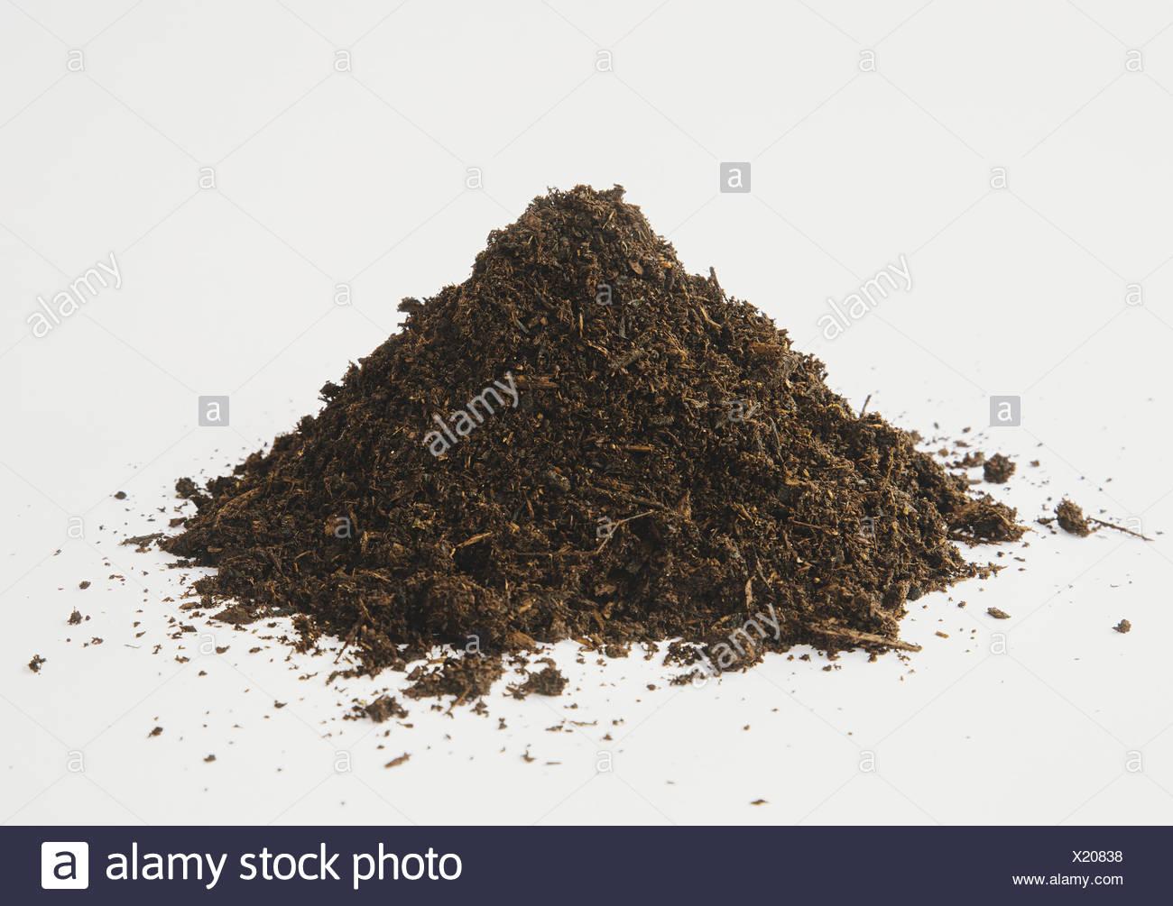 Seattle Washington USA pile of organic compost on white background - Stock Image