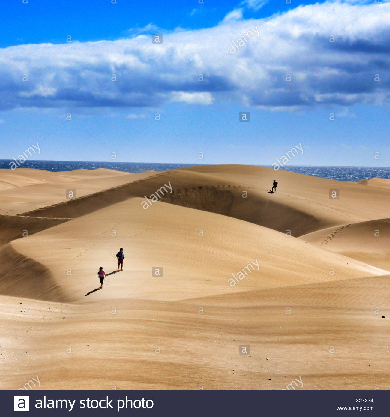 People on sand dune next to ocean - Stock Image