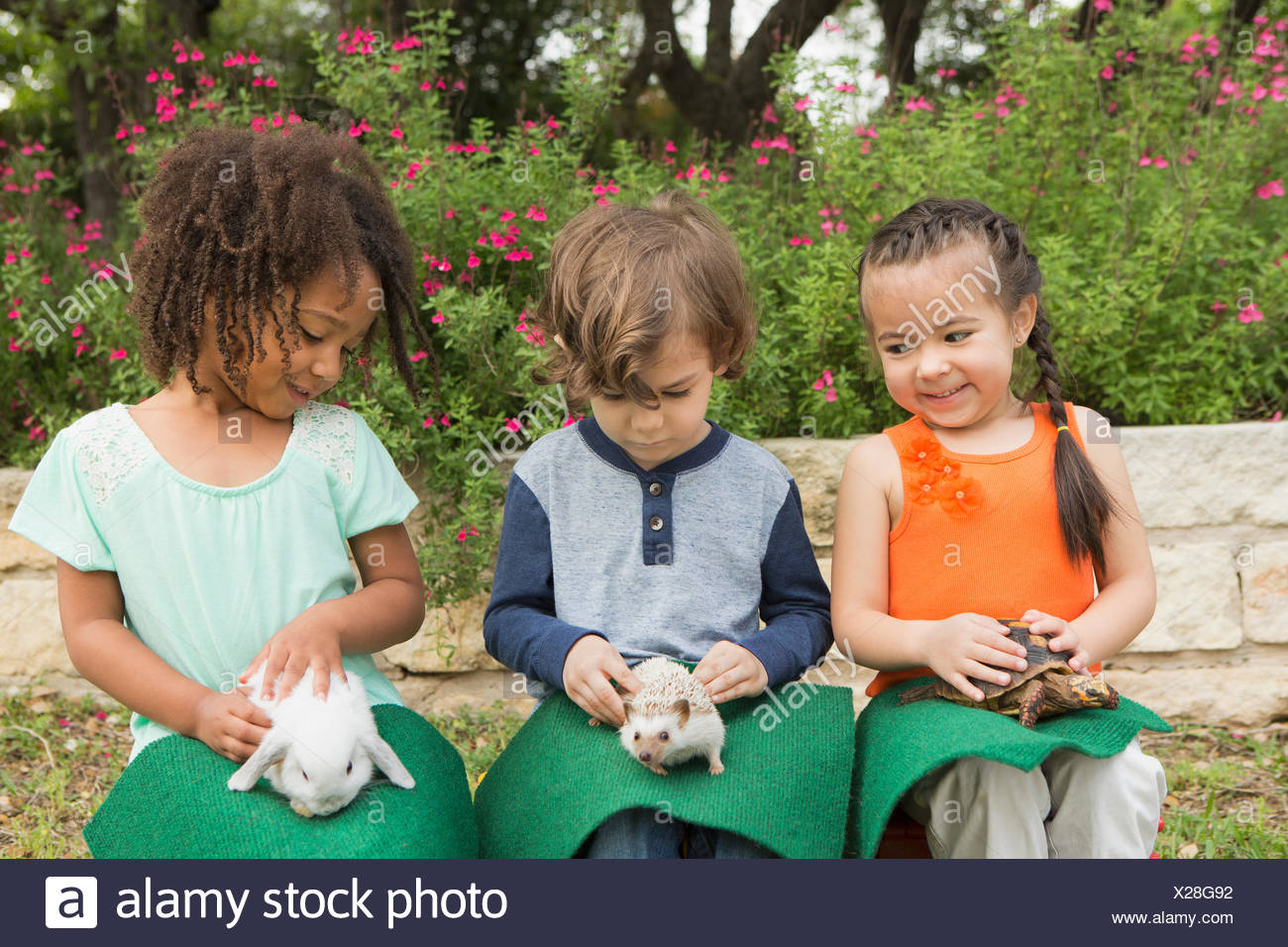 Three children seated in a row, each with a small animal on their lap. - Stock Image