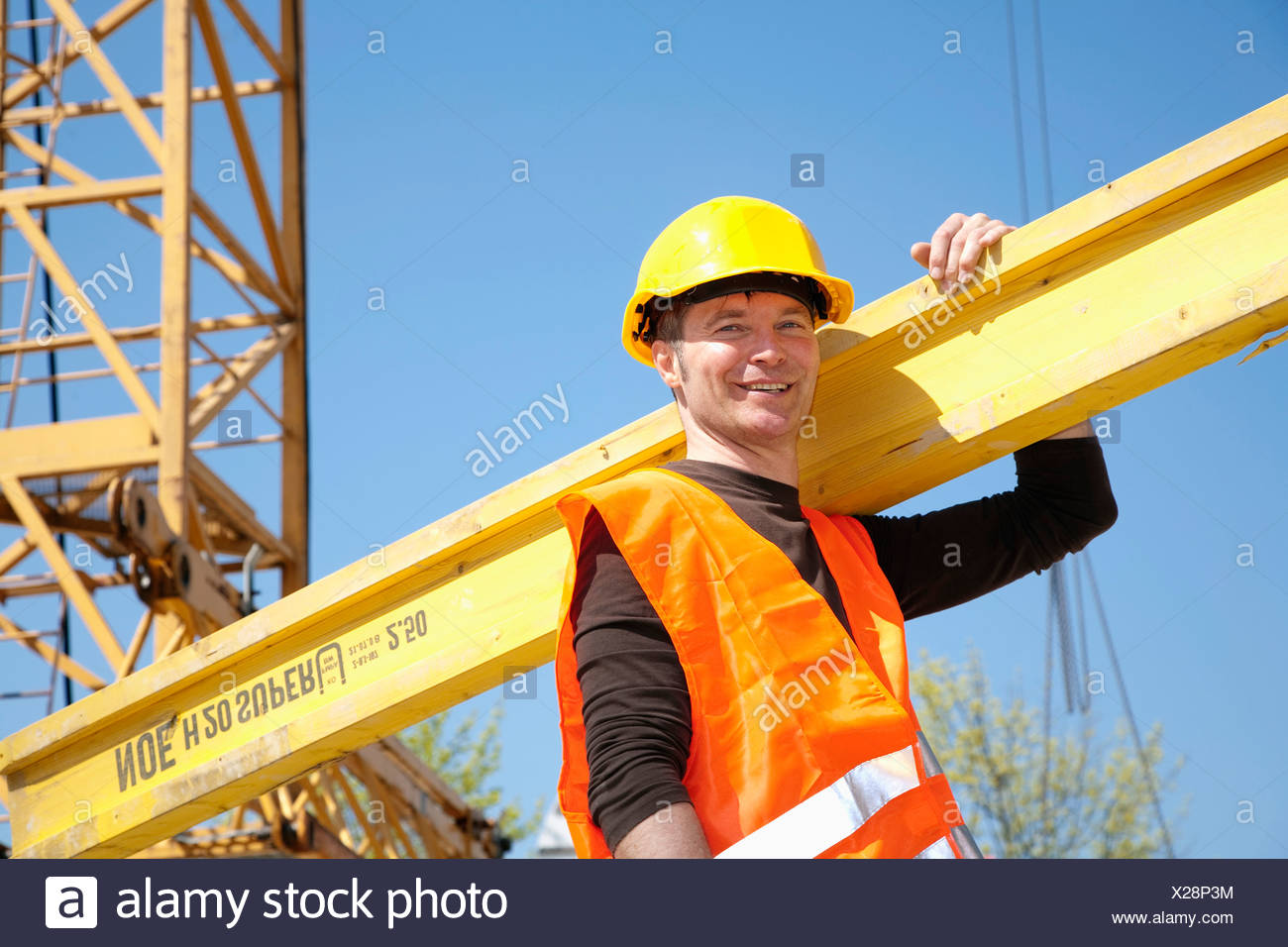portrait of construction worker carrying wooden plank - Stock Image