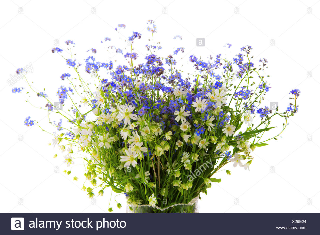 Spring wild flowers bouquet stock photo 276803804 alamy spring wild flowers bouquet izmirmasajfo