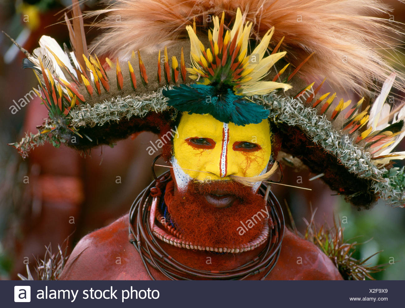 Huli tribesman dressed for the singsing at Mount Hagen, Papua New Guinea - Stock Image