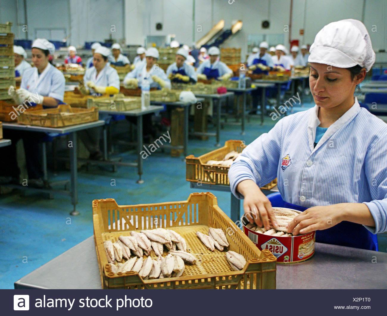 Mackerel during canning process, USISA trademark, Isla Cristina, Huelva province, Andalusia, Spain - Stock Image
