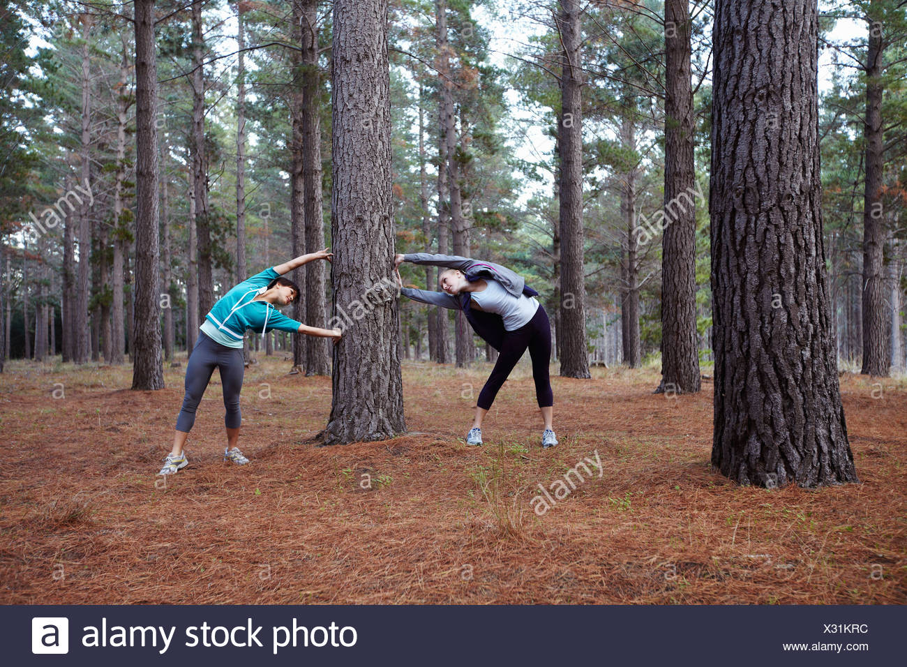 Runners stretching in forest - Stock Image