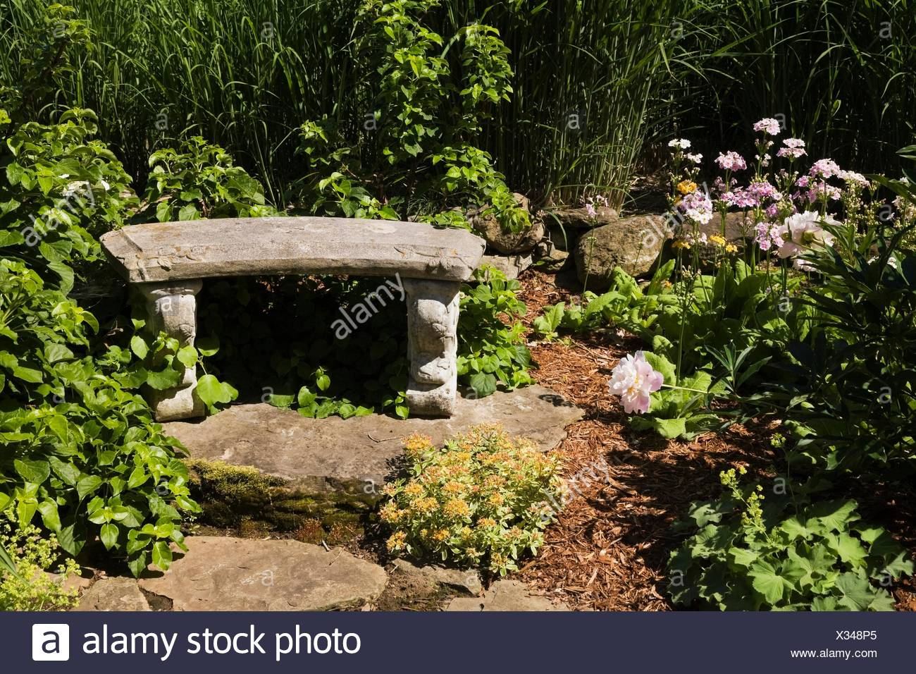 Border With Romanesque Garden Bench And Perennial Plants Flowers