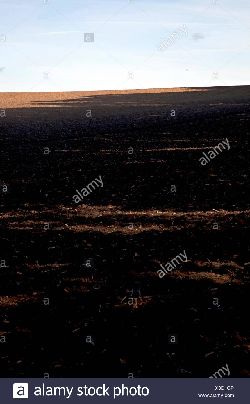 Field, agriculture, landscape, harvested, cropland - Stock Image