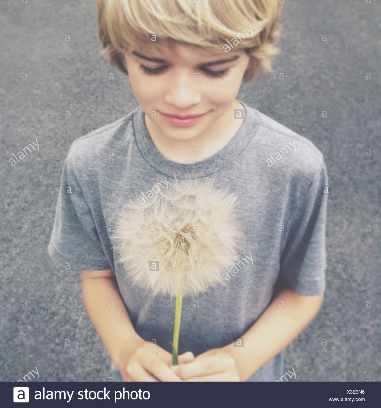 Blonde boy holding giant dandelion - Stock Image