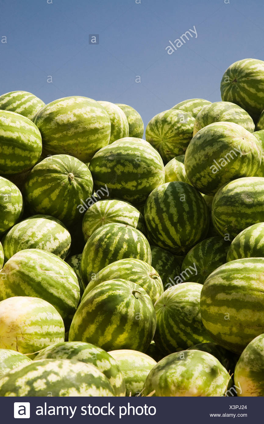Pile of watermelons at market - Stock Image
