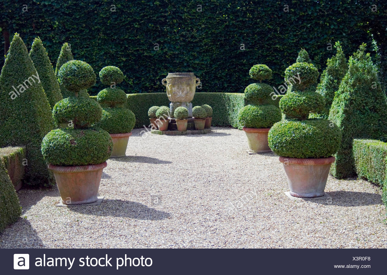 BOX TOPIARY IN FORMAL DESIGN AND GARDEN URN EAST RUSTON OLD VICARAGE  NORFOLK.