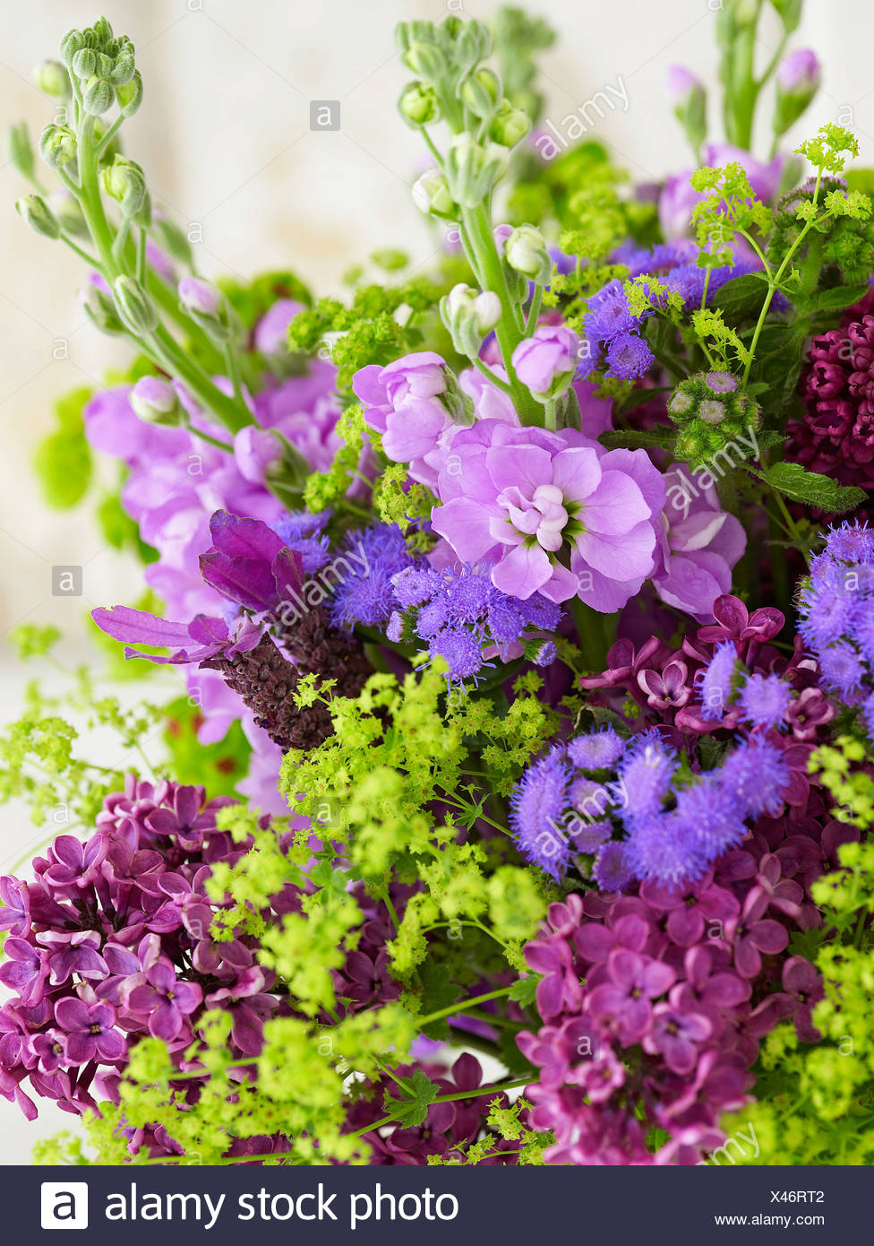 Bunch of flowers including stocks, alchemilla, lavender, euphorbia, ageratum, lilac, close-up - Stock Image