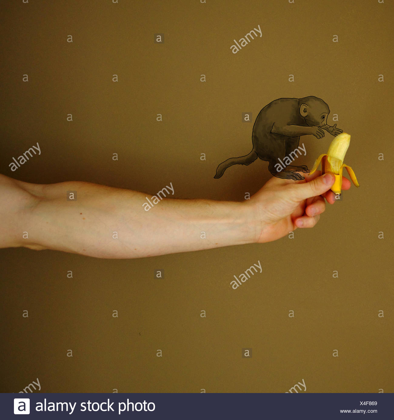 Conceptual monkey - Stock Image