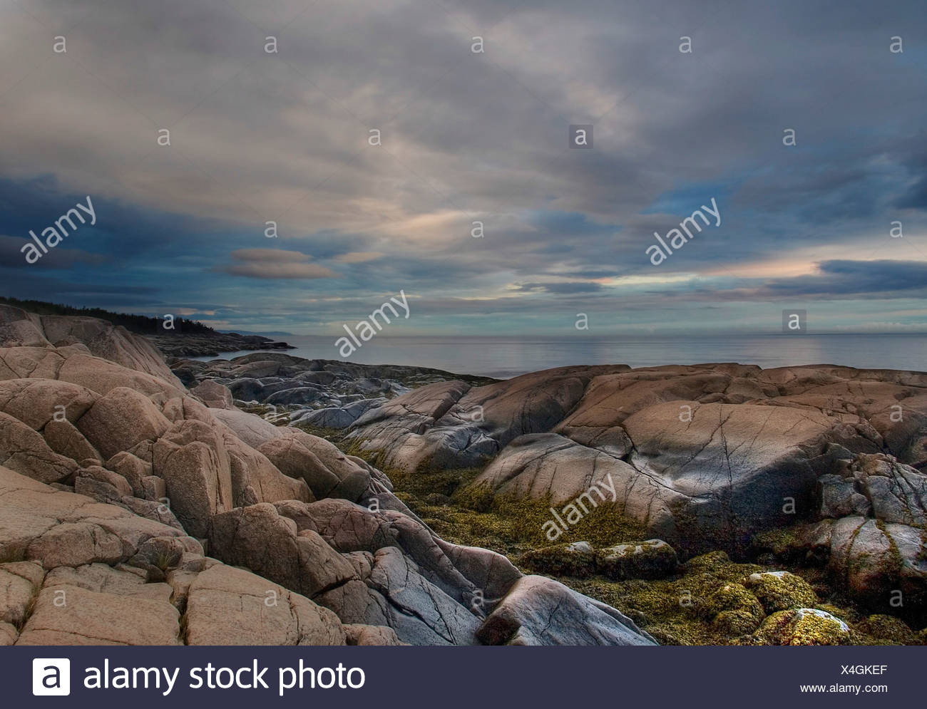 A rocky foreshore - Stock Image