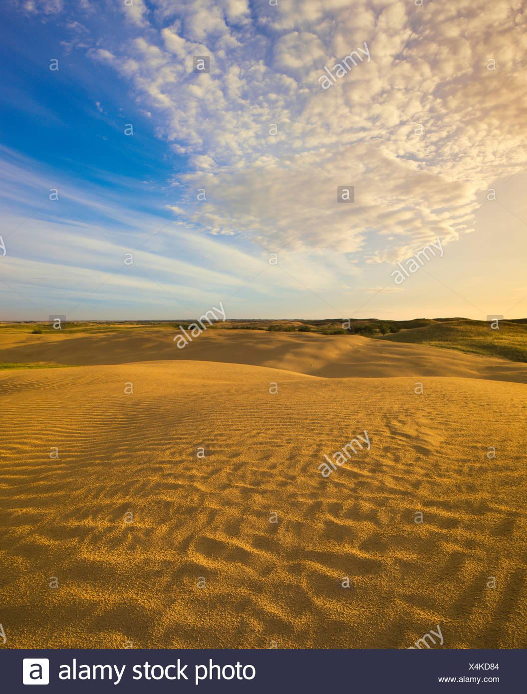 Detail of Great Sandhills near Leader, Saskatchewan, Canada. - Stock Image