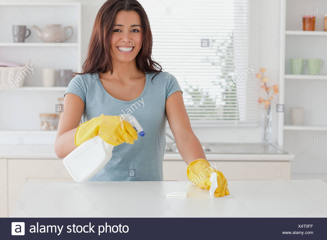 Beautiful female doing the housework while using a spray - Stock Image