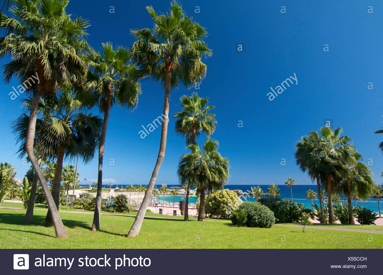Playa Amadores Beach in Puerto Rico, Grand Canary, Canary Islands, Spain - Stock Image