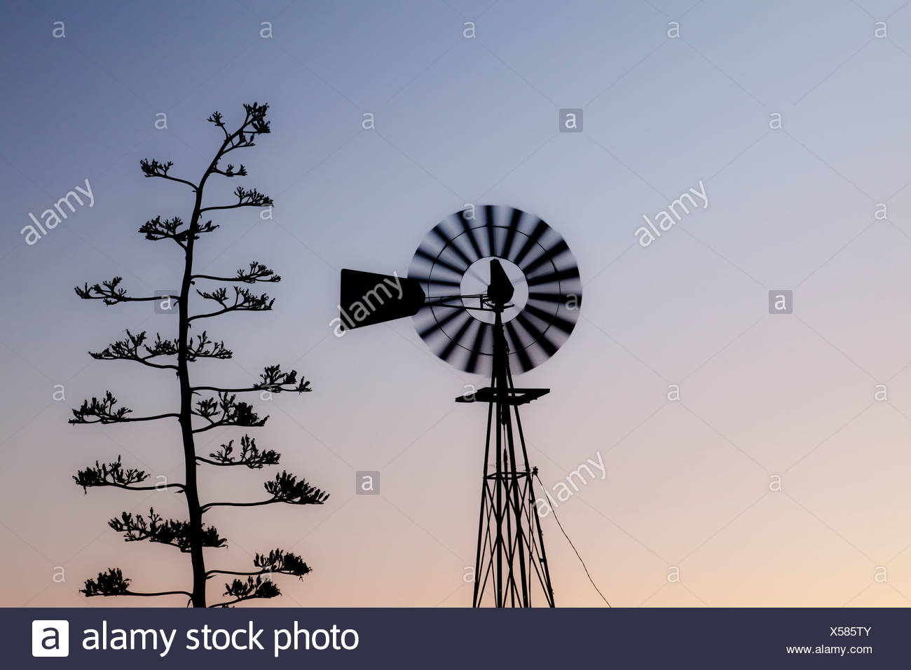 Mexico Tecate Rancho La Puerta Silhouette Of Water Windmill Stock
