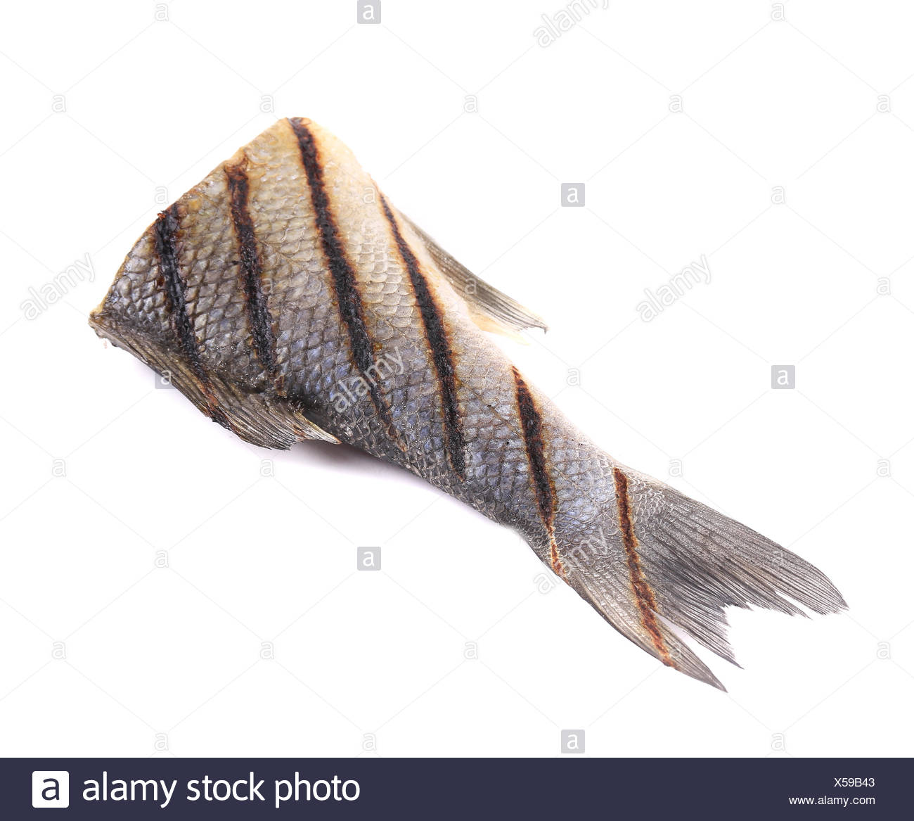 Fish tail. - Stock Image