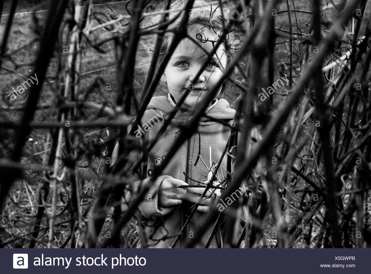 Girl hiding behind bushes - Stock Image