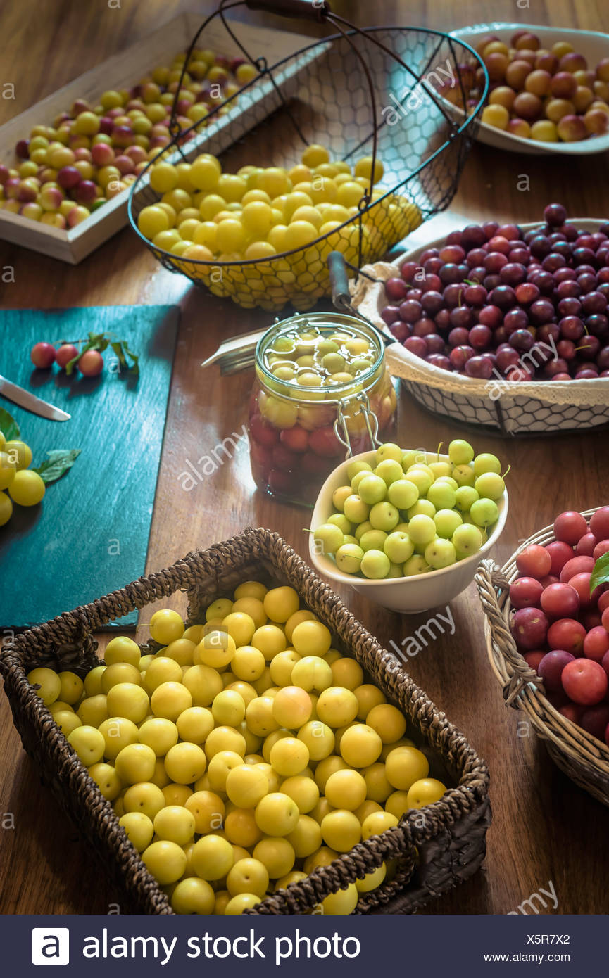 Assortment of mirabelles - Stock Image
