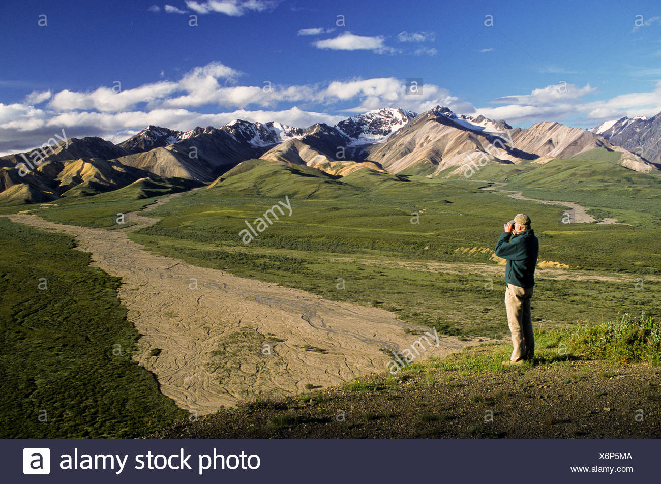 Alaska, Denali National Park. Polychrome Flats. Hiker enjoying the view. - Stock Image