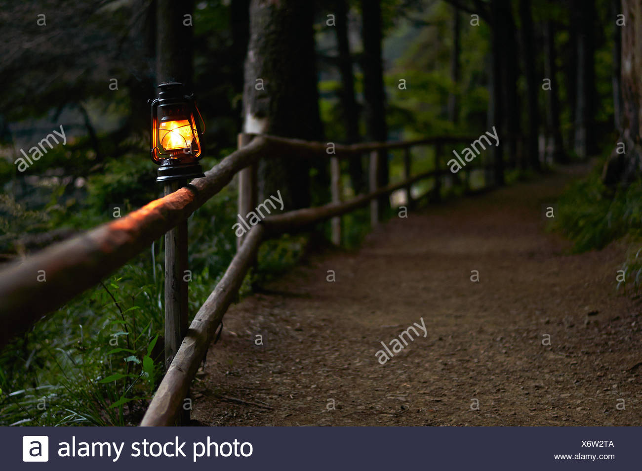 Illuminated oil lamp on fence along woodland path - Stock Image
