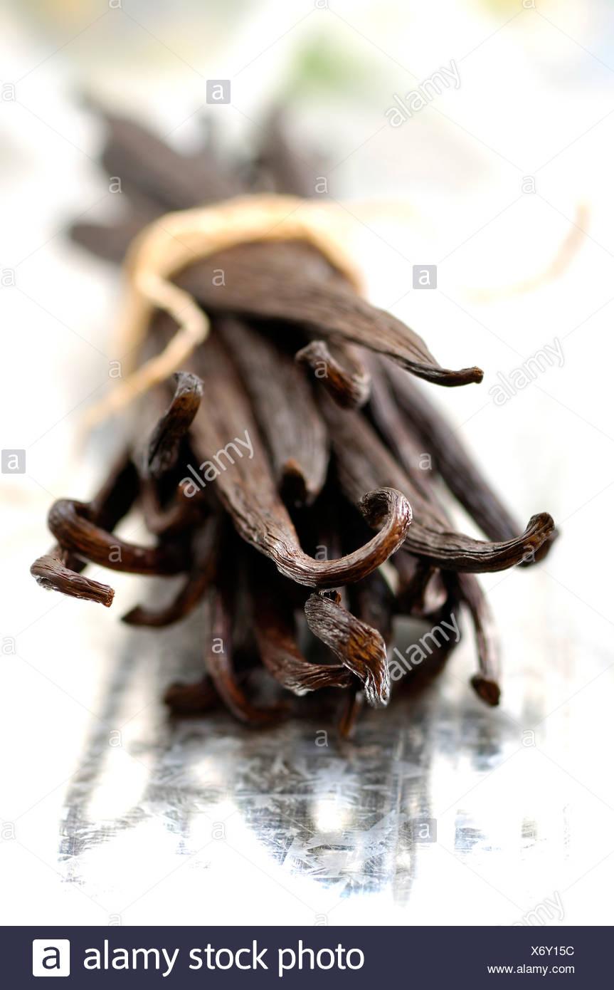Bundle of vanilla pods - Stock Image