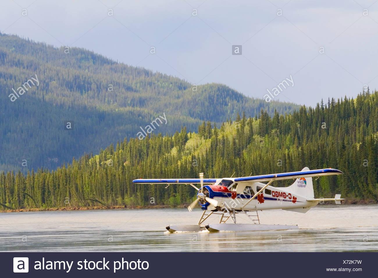Taxiing, legendary de Havilland Canada DHC-2 Beaver, float plane, bush plane, Yukon River, Teslin River, Hootalinqua, Yukon Ter - Stock Image