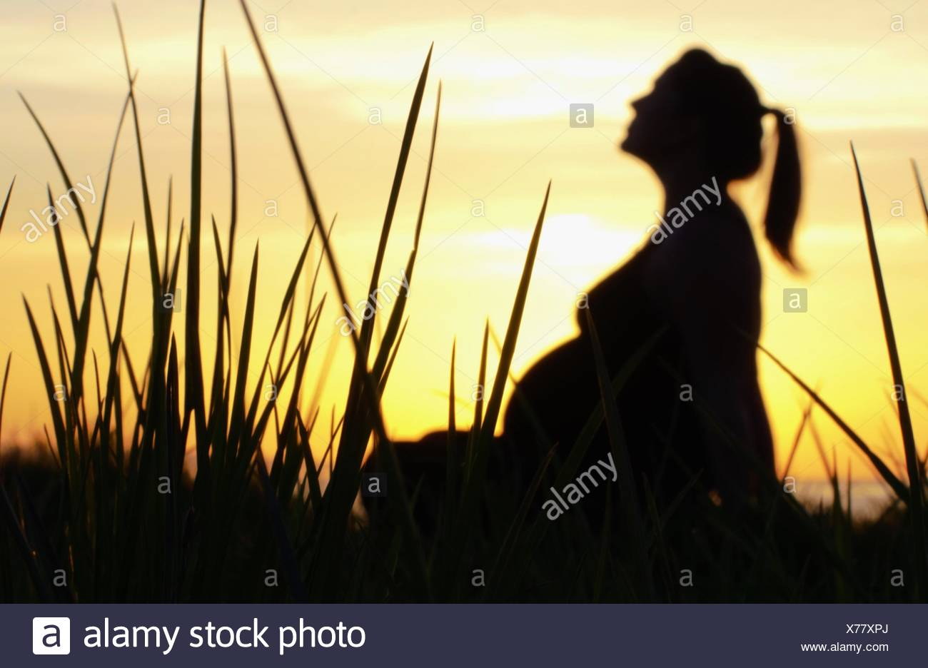 Sunset Silhouette of Pregnant Woman sitting amongst tall grass - Stock Image