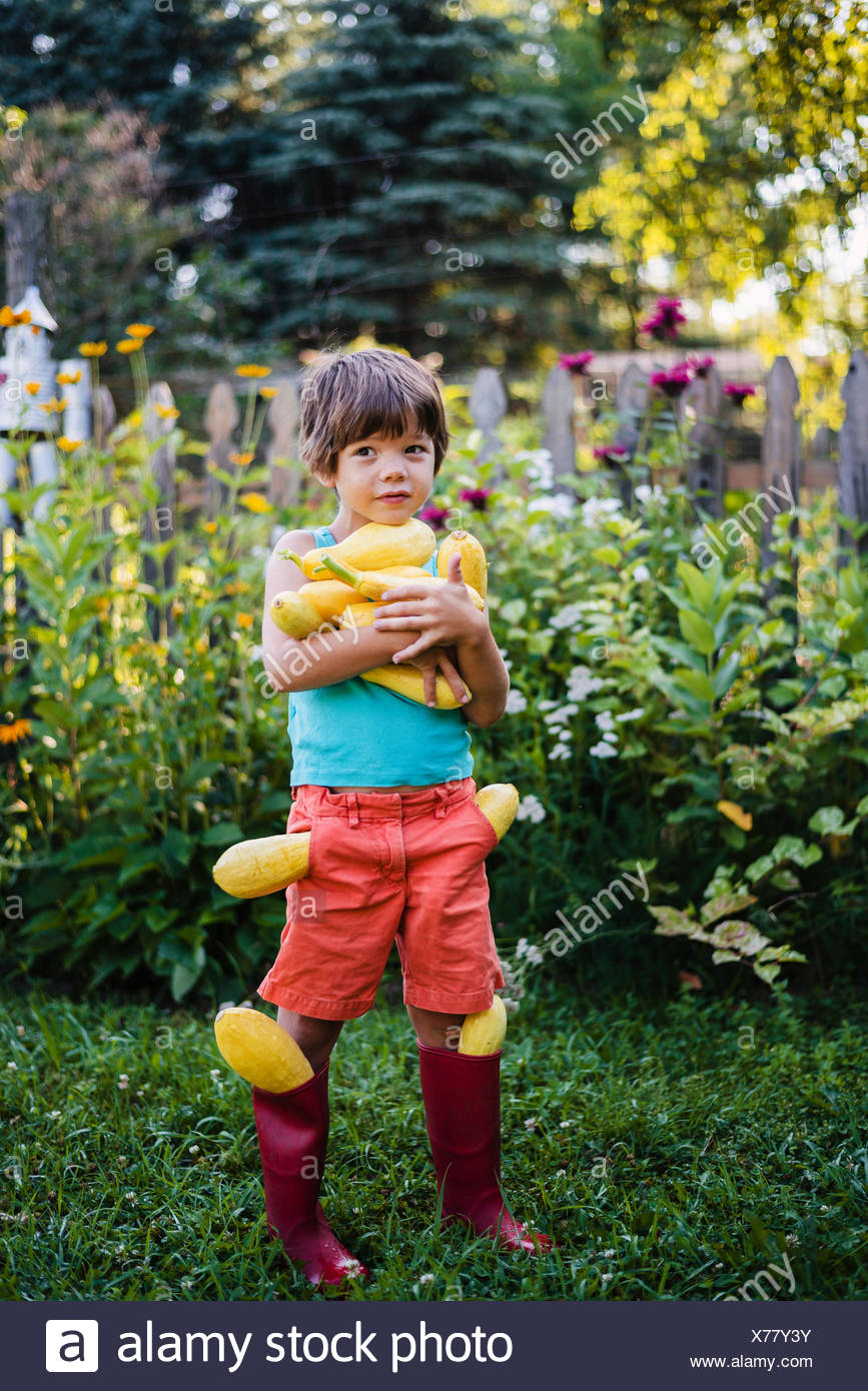 Boy carrying fresh harvest of summer squash - Stock Image