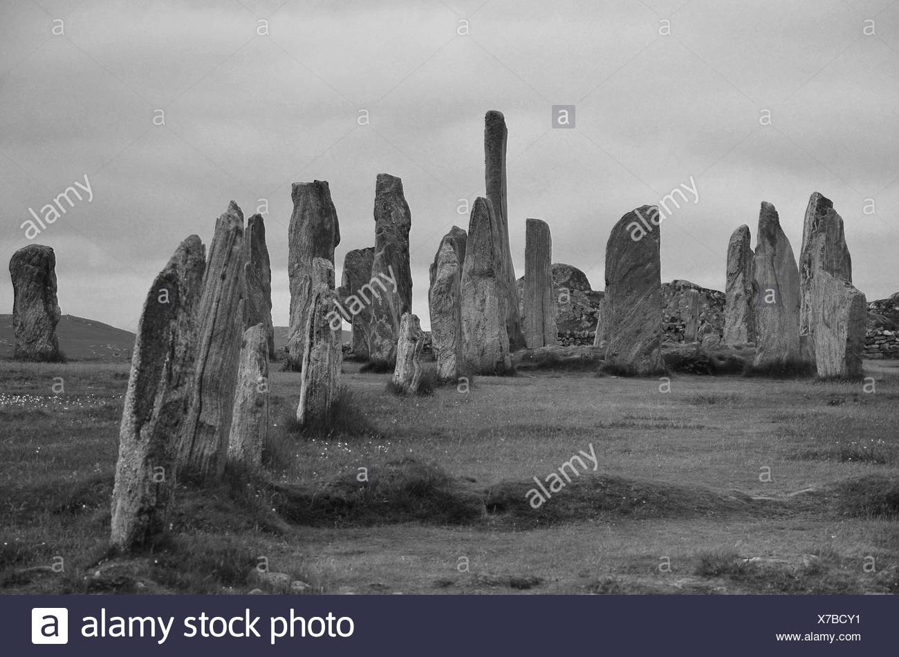 Scotland, lewis, megaliths, standing stones, stone circle, menhirs, callanish, Outer Hebrides, Hebrides, Great Britain, Europe, - Stock Image