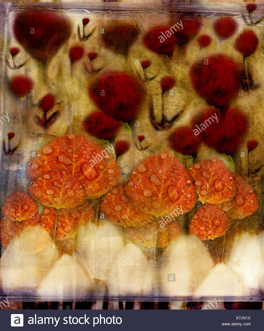 Abstract garden - Stock Image