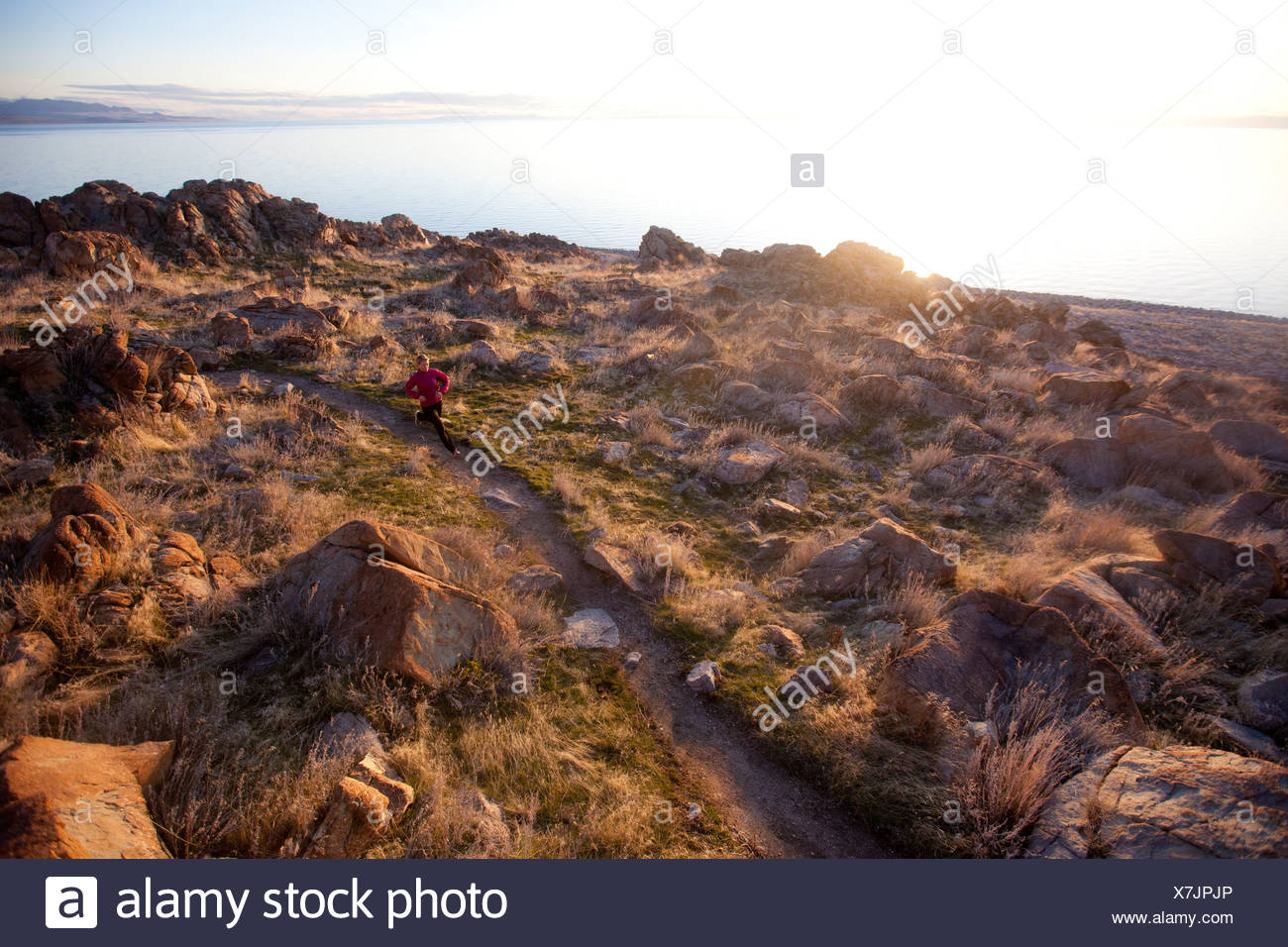 A woman out for an afternoon trail run on Antelope Island, Utah. - Stock Image
