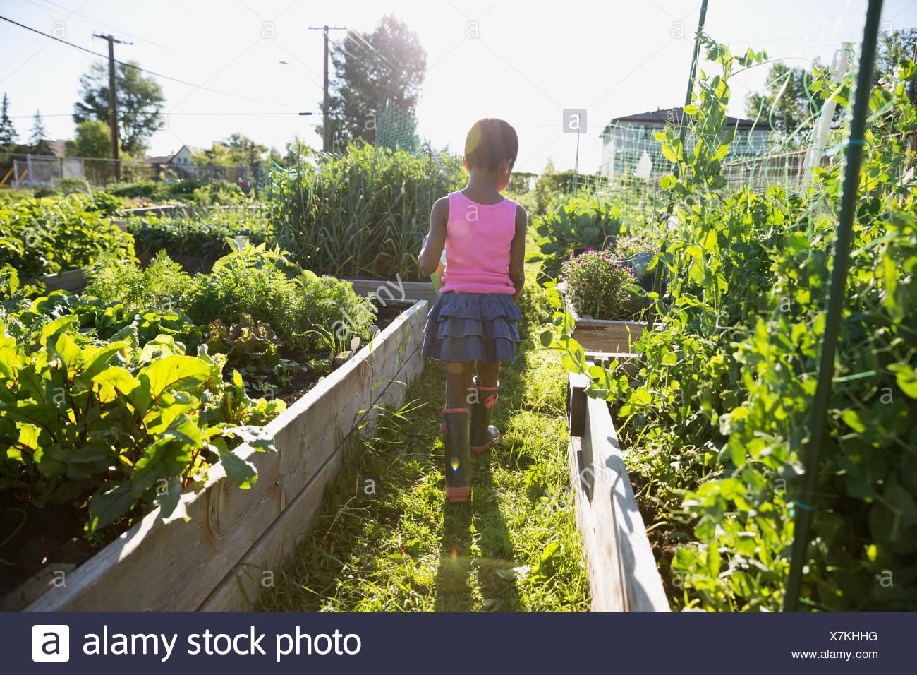 Girl walking in sunny vegetable garden - Stock Image