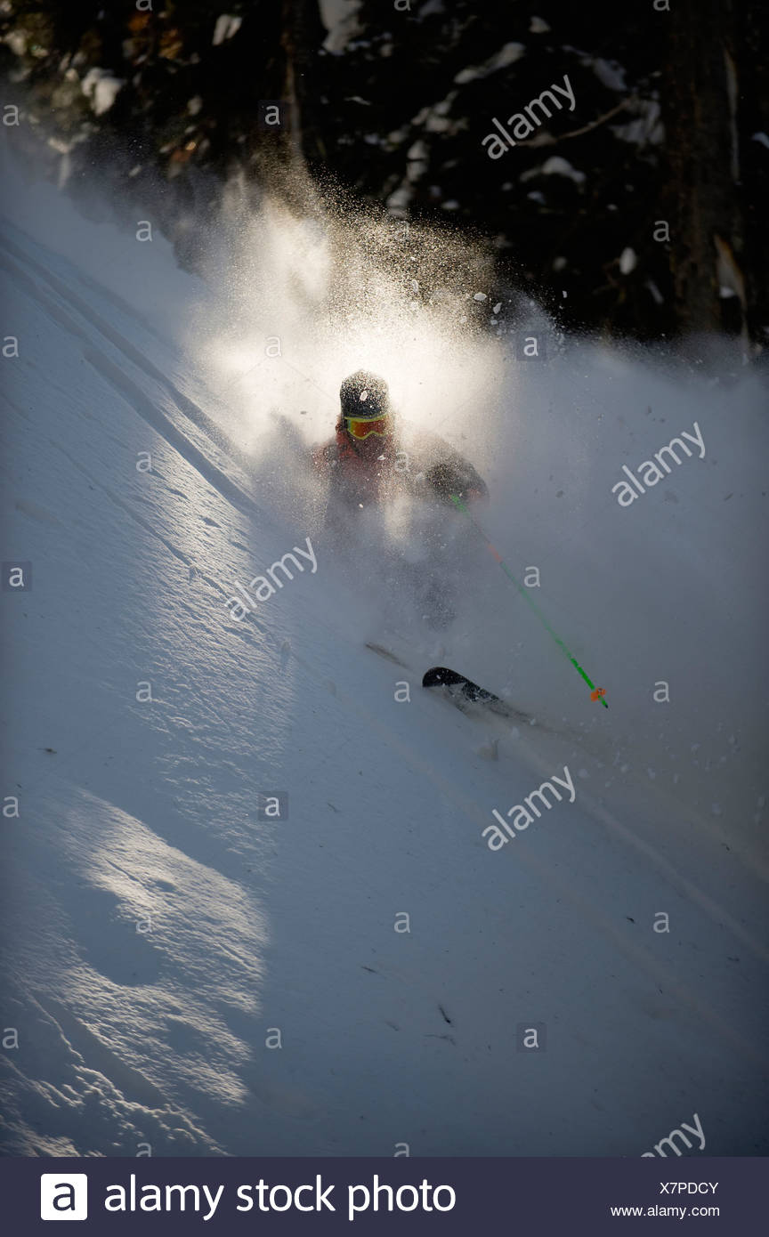 A backcountry skier is buried in billlowing cloud of snow as he skis the trees of the Selkirk Mountains, Canada. (backlight) - Stock Image