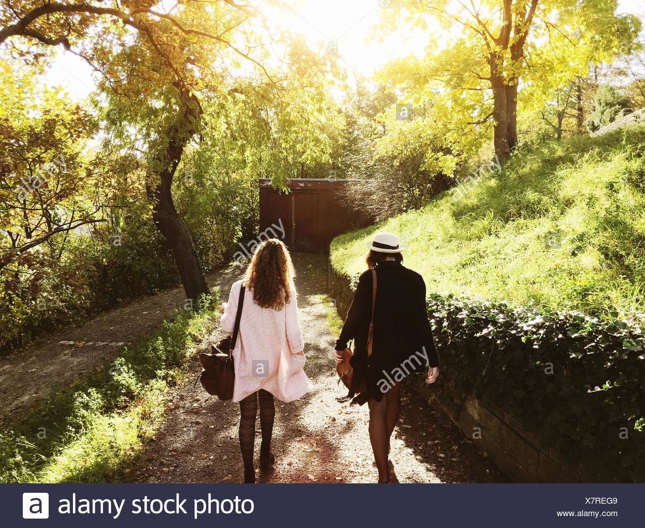 Rear View Of Young Female Friends Walking On Footpath In Park - Stock Image