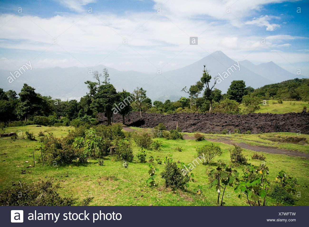 Preparation of new field; Antigua, Guatemala - Stock Image