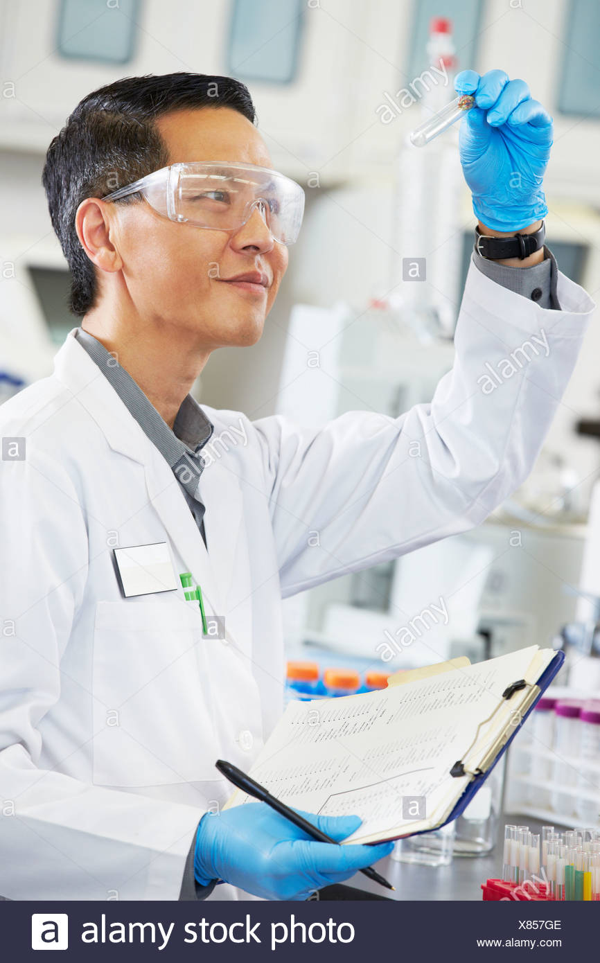 Male Scientist Working In Laboratory - Stock Image