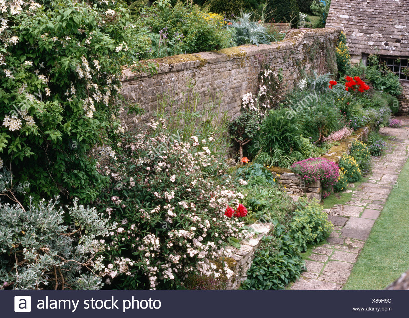 Border Planted With Perennials And Flowering Shrubs In Walled Garden